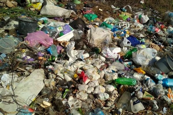 Підніжжя гори «Дівочі скелі» в Кременці місцеві перетворили на смітник