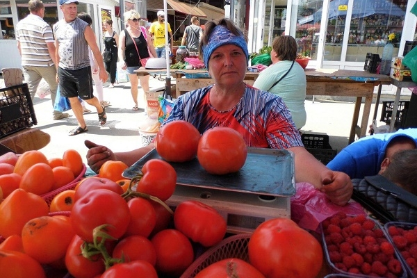 Аграрна Тернопільщина: Овочі цілорічно до столу