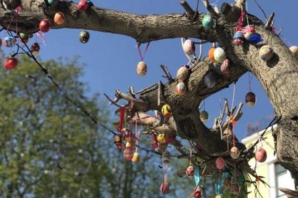 У Кременці дерева прикрасили писанками (Фото)