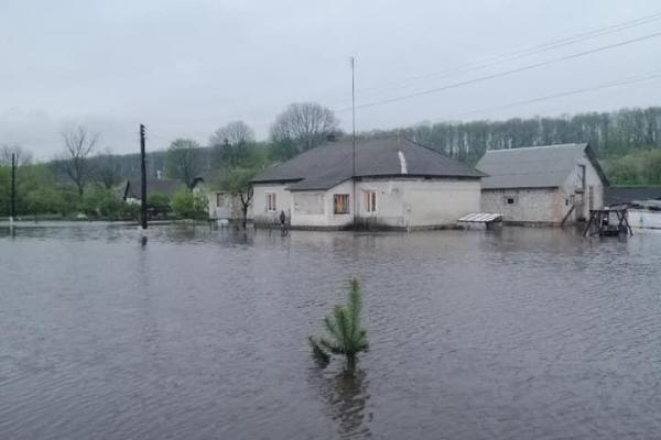 Насліди негоди: через зливу городи мешканців Шевченкового перетворилися у ставки (Відео)