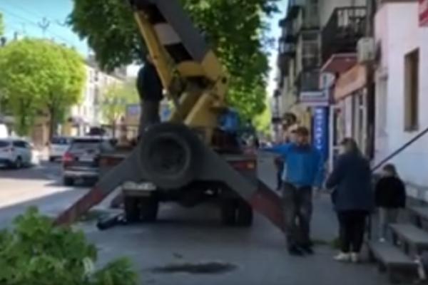 У центрі Тернополя комунальники обрізають дерева: гілка впала на жінку і дитину (Відео)