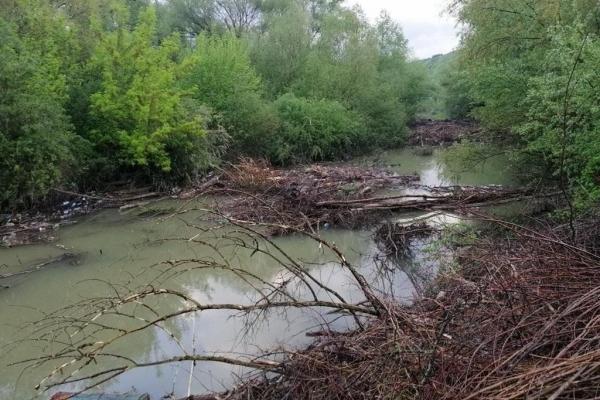 Територія біля Дністра на Тернопільщині схожа на смітник (Фото)