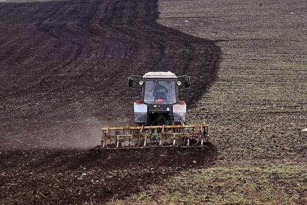 «Сезон дощів» не дає тернопільським аграріям вчасно провести посівну