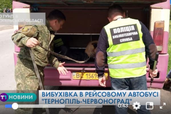 Правоохоронці отримали повідомлення про замінований рейсовий автобус на Тернопільщині