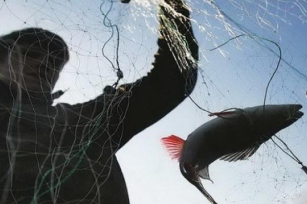 Краденими вудками ловив рибу на чужому ставку