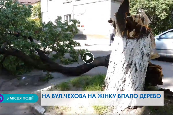 У Тернополі на молоду дівчину впало дерево (Відео)
