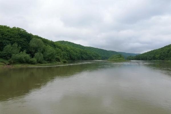 За пригодами на Дністровський каньйон: еко-прогулянки серед унікальної природи, круїзи по Дністру та рай для бьордвотчерів