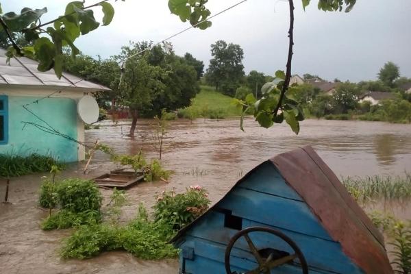 Залило будинок, все подвір'я у воді, – на Тернопільщині затопило матір трьох дітей