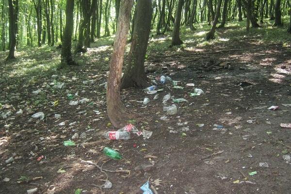 Хто відповідальний за екологію в Теребовлі?