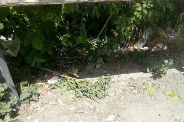 На Тернопільщині ігнорують смітники, залишаючи відходи під ногами
