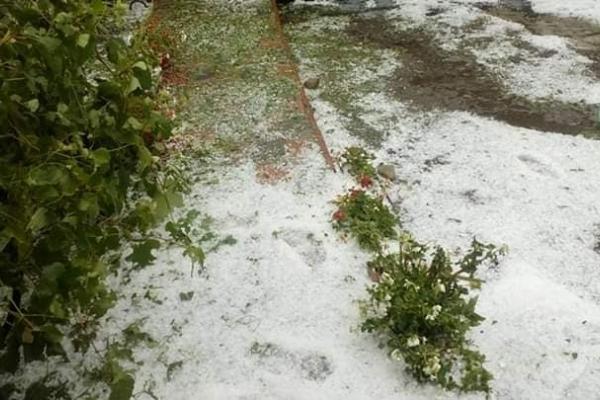 Сніг серед літа. На Чортківщині випав град