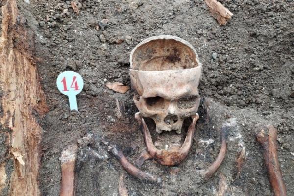 З'ясували, чиї скелети розкопали у Чорткові на Тернопільщині