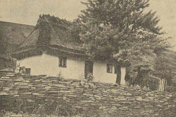 Мальовнича Тернопільщина на фото 1936 року