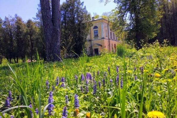 Хто живе у стінах мисливського палацу у селі Рай на Тернопільщині
