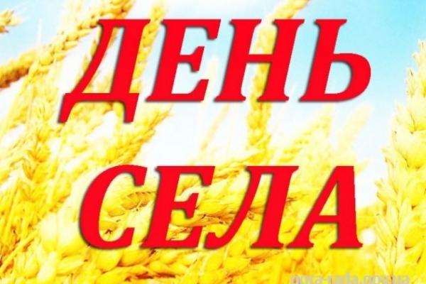 4 серпня відбудеться святкування Дня села у Великій Іловиці