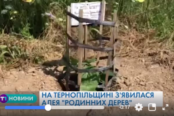 На Тернопільщині висадили майже 100 саджанців «Адамових дерев»