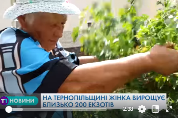 На Тернопільщині жінка вирощує близько 200 екзотів (Відео)