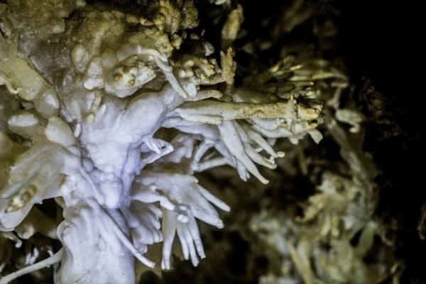 На Тернопільщині під землею сховане справжнє диво – найдовша в світі гіпсова печера (Відео)