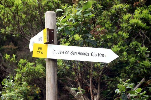 Як тернополянка подорожувала Канарським островом Тенеріфе з наметом та автомобілем