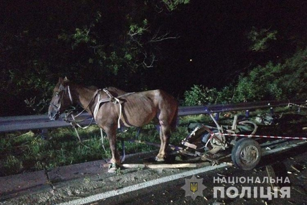 На Тернопільщині, водій підводи загинув у ДТП