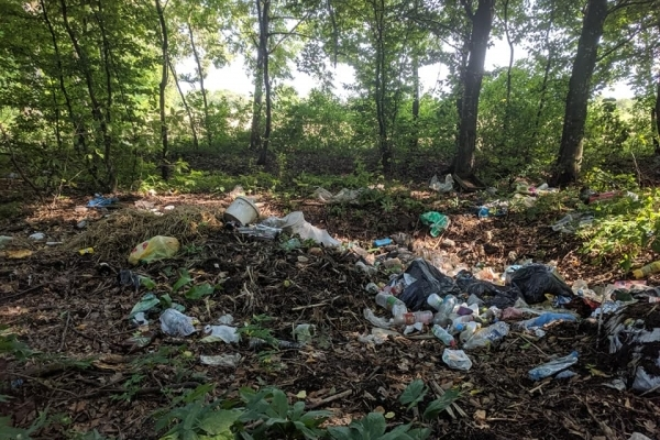 На Тернопільщині ліс перетворюють на сміттєзвалище