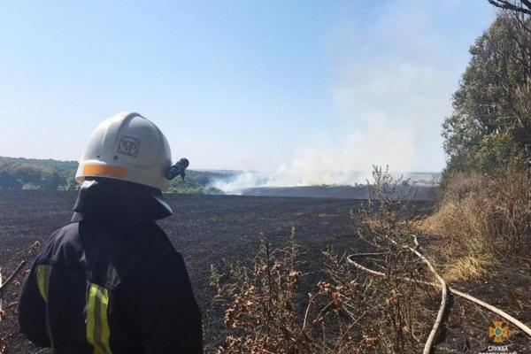 У Тернополі горять пожнивні залишки