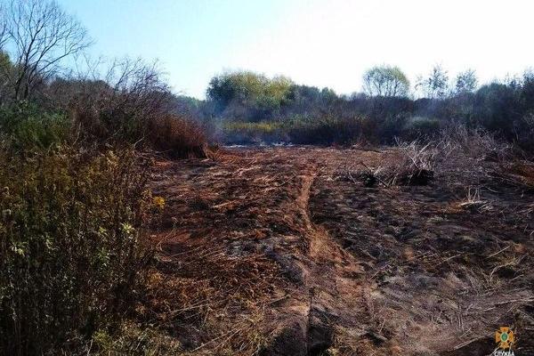 На Тернопільщині горять торфовища