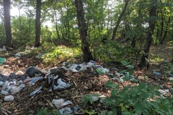 «Гори сміття» – у соцмережі показали як виглядає ліс неподалік одного з найкрасивіших водоспадів Тернопільщини