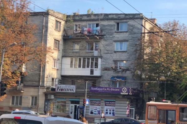 У Тернополі в центрі на даху будинку виростає ліс (Фотофакт)