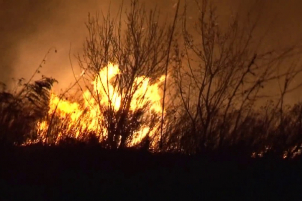 На Тернопільщині люди підпалили сухе листя на торф'яних покладах