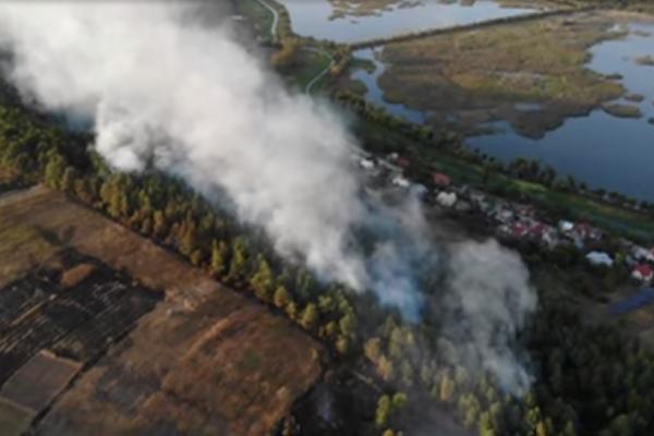 Біля Бережан загорівся ліс, бо люди спалюють бадилля з городів (Відео)