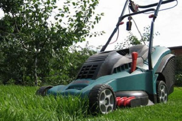 25-річний чоловік вкрав газонокосарку