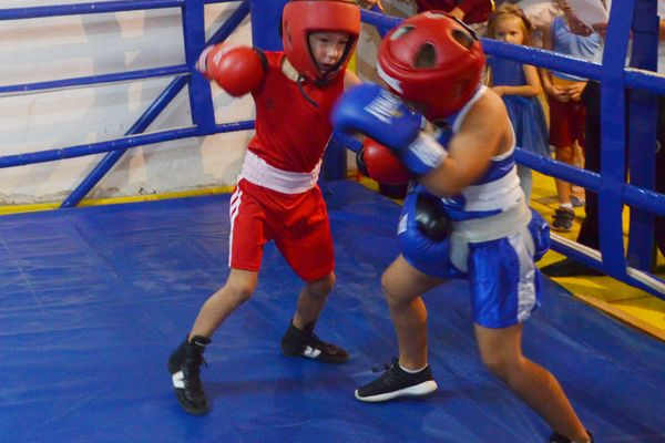 День фізкультури і спорту України в Теребовлі