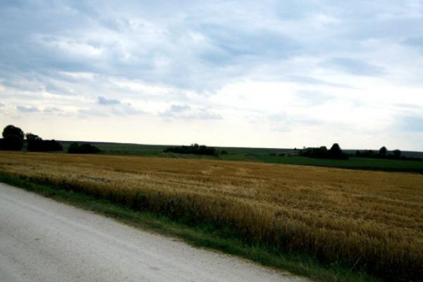 Заболотецькі хутори: колись, тепер і завтра