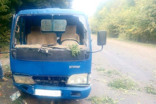 На Тернопільщині сильні пориви вітру трощать автомобілі