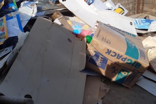 На Тернопільщині борються з незаконними сміттєзбірниками