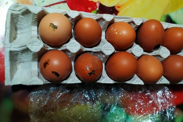 У крамниці на Тернопільщині продають побиті курячі яйця (Фото)