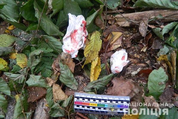 На Тернопільщині гілка проломила голову чоловіка