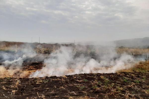 На Тернопільщині горить торф