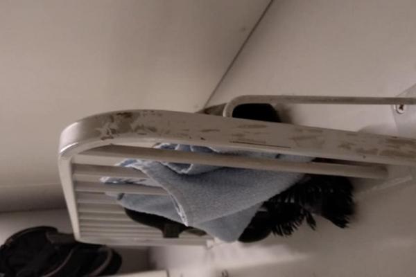 Пасажири шоковані жахливими умовами у популярному потязі, який курсує через Тернопіль