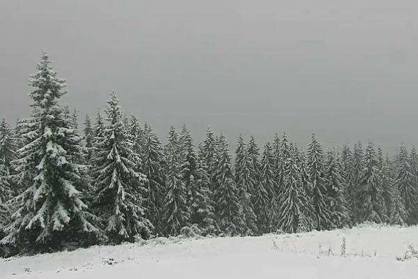 В Карпати прийшла зима