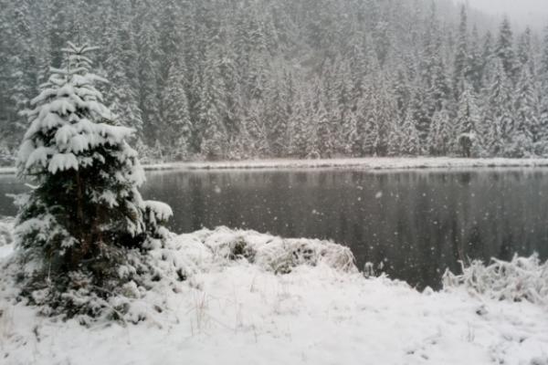 Люта осінь: Карпати вже повноцінно засипало снігом (Фото, відео)