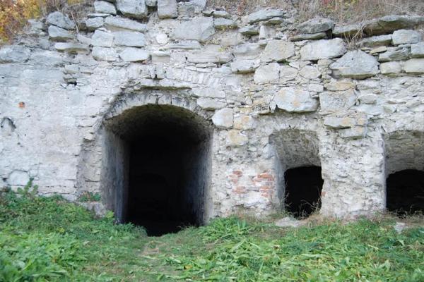 На Тернопільщині повертають велич історичним пам'яткам