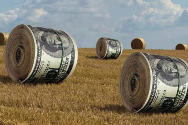 «Ми дискутуємо про земельну реформу»: у Тернополі обговорили новий законопроєкт