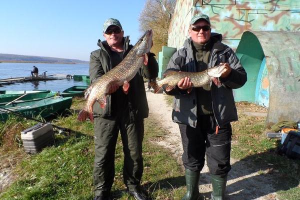 Спіймали 10 метрів щуки та випустили у водойму - спортивні рибалки закрили сезон