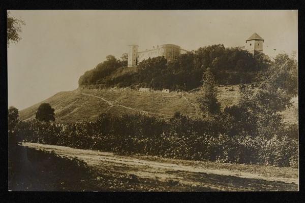 Село Висічка на ретро фото