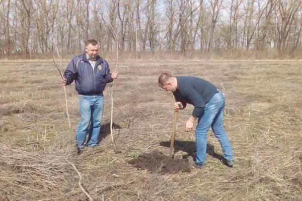 «Сади ветеранів АТО» - дієвий успішний кооператив