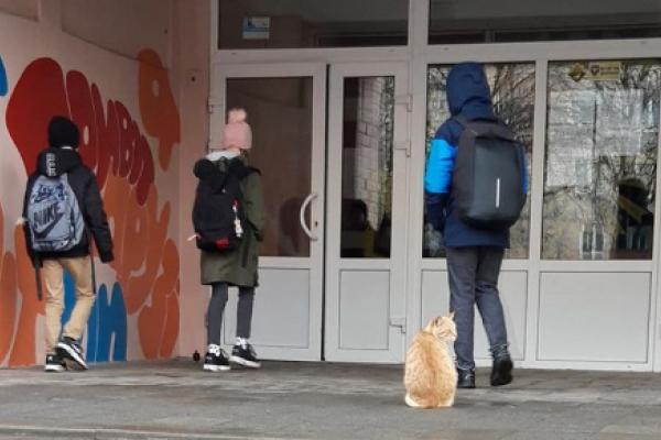 Біля однієї однієї з тернопільських шкіл з'явився незвичайний вахтер (Фото)
