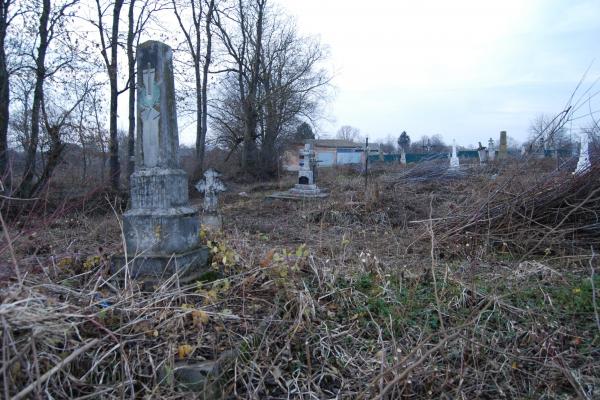 «Людей не стало, а могили їхньої рідні залишились»: на Тернопільщині активісти розчищають кладовища