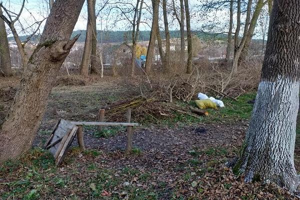 Житель Бережан закликає краян 16 листопада допомогти прибрати занедбаний парк